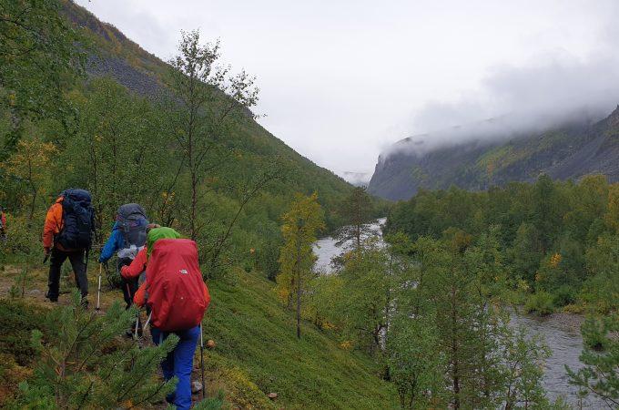 elv, natur, skog, folk på tur