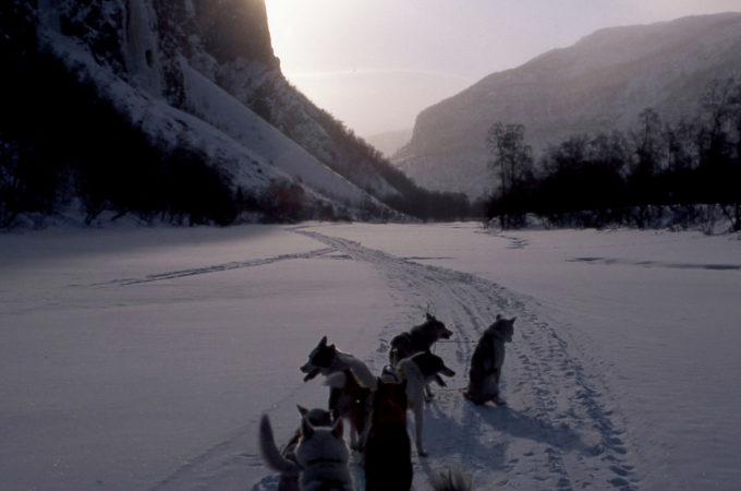 http://reisanasjonalpark.no/wp-content/uploads/hundespann-wofferdal-680x450.jpeg