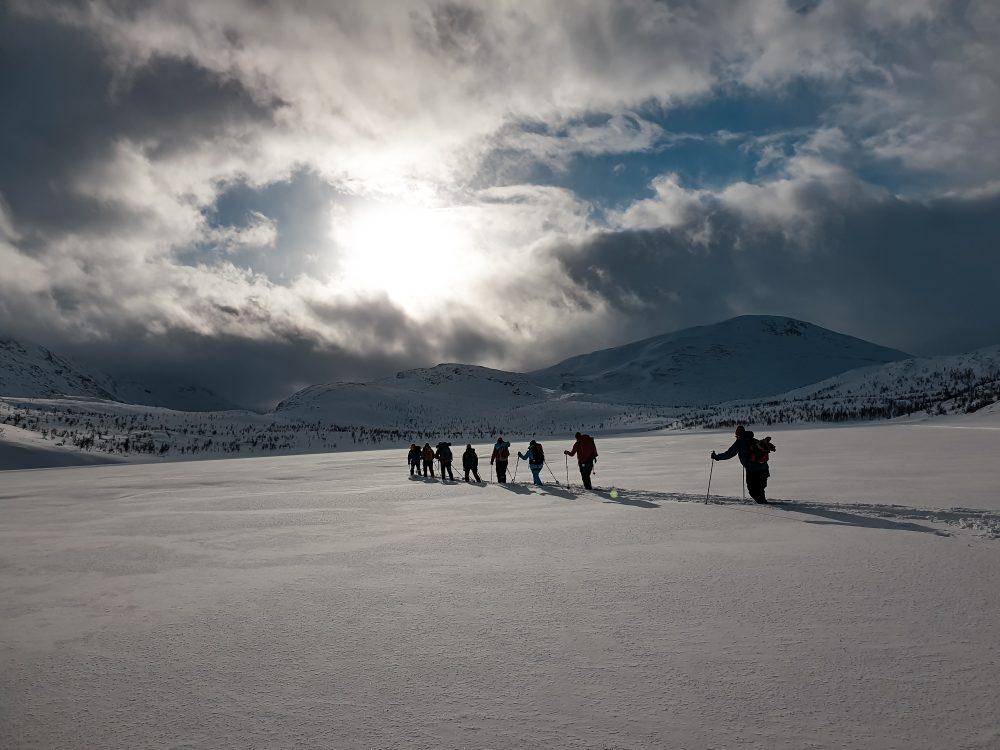 Skiløpere fjell snø vinter sol