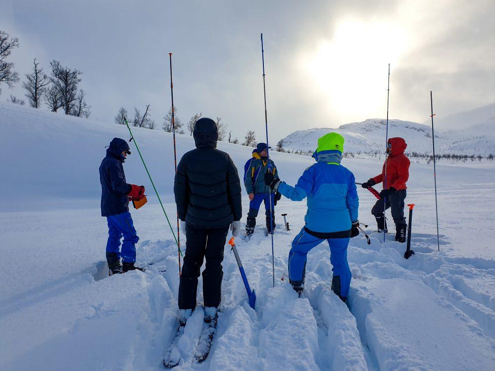 søkestenger, folk, vinter, snø