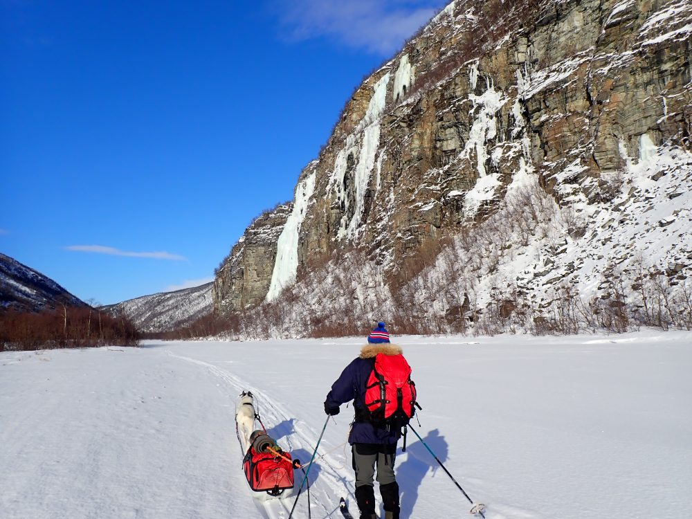 vintertur, skiløper, sol, dalside, hund, pulk