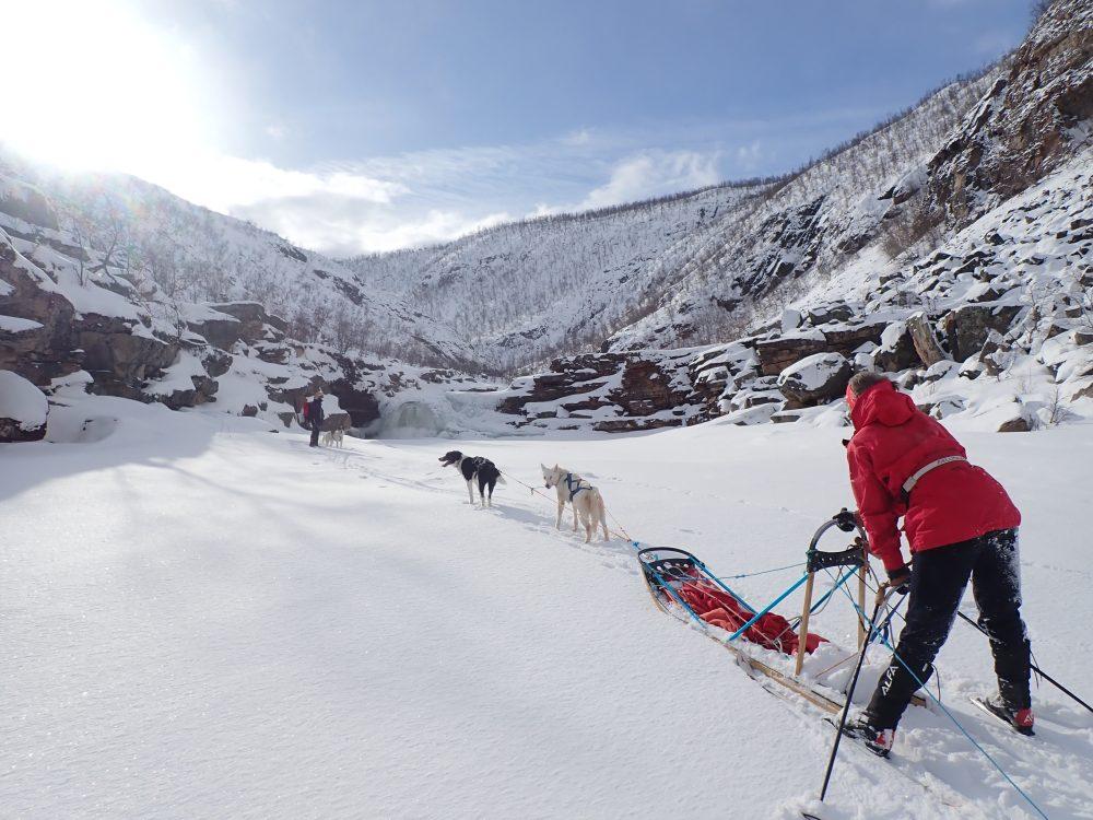foss, vinter, sol, snø, skilper, trekkhunder, slede