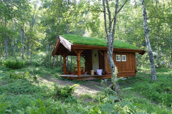 http://reisanasjonalpark.no/wp-content/uploads/sieimma-1-680x450.jpg