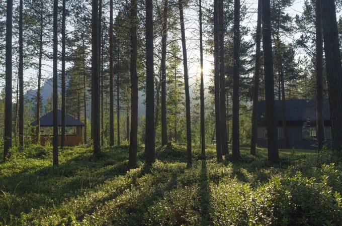 https://reisanasjonalpark.no/wp-content/uploads/reisadalen-hytteutleie-680x450.jpg